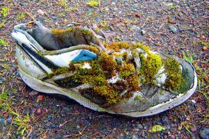 Trailrunning: Auf das richtige Schuhwerk kommt es an
