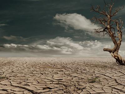 Und die Erde ward wieder wüst und leer.